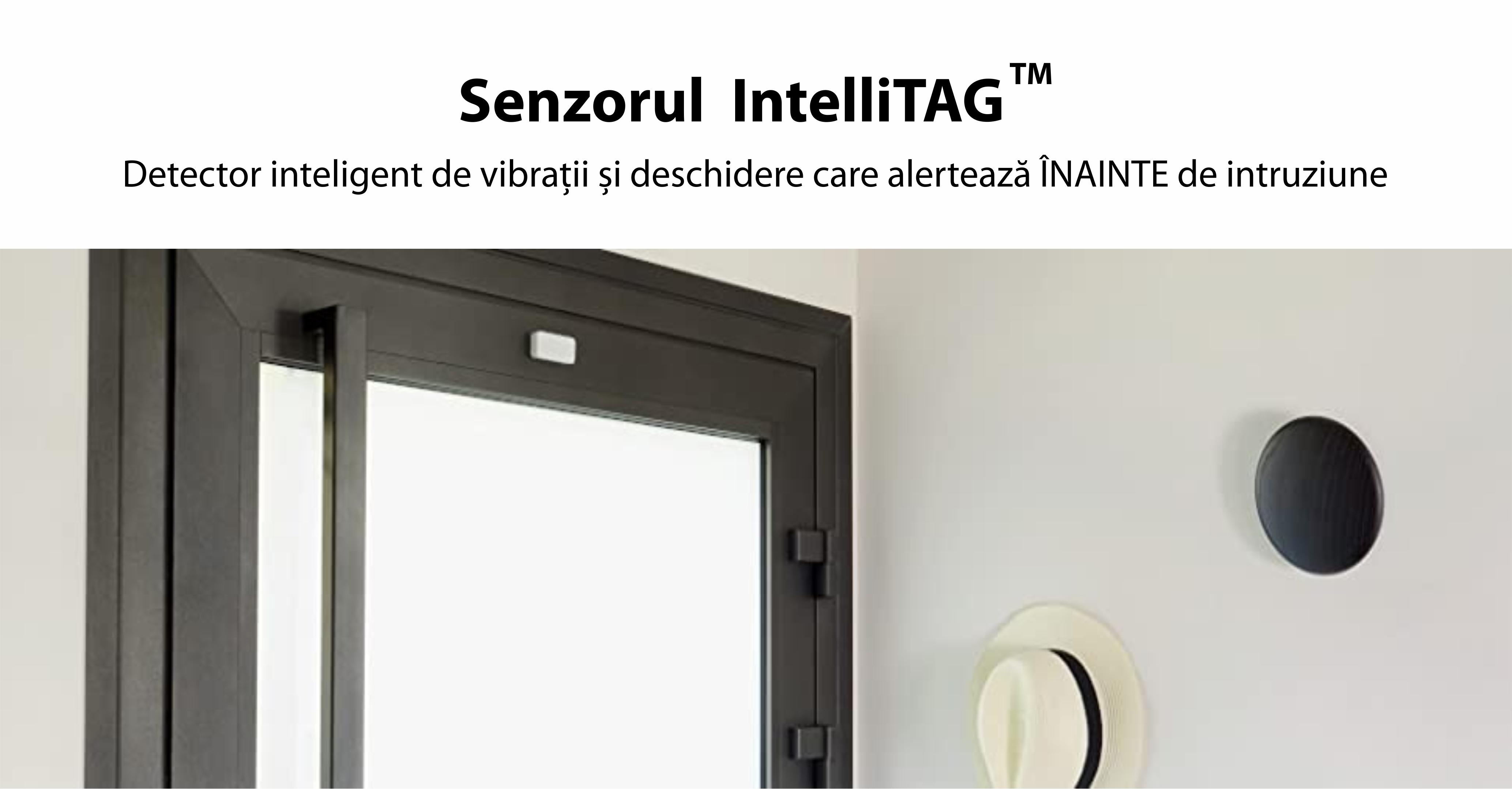 Intellitag™  Senzor pentru usa/fereastra interior sau exterior, Compatibil cu Somfy One, One+, Home Alarm